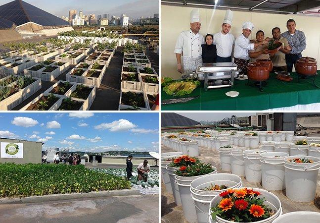 Shopping de SP cria telhado com composteira e horta e dá novo destino ao lixo orgânico que sobra de seus restaurantes