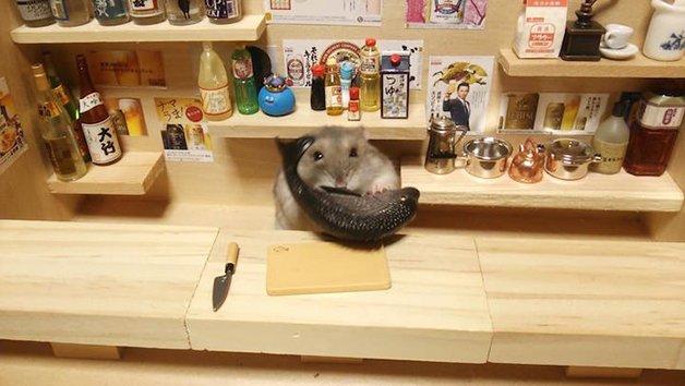 HamsterBartender11