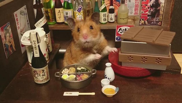 HamsterBartender2