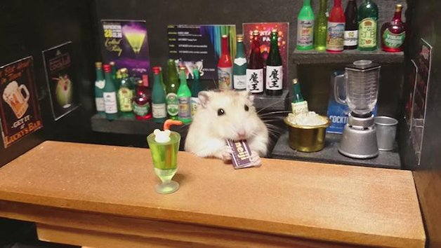 HamsterBartender3