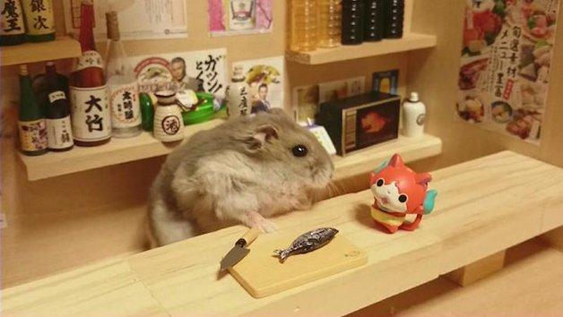 HamsterBartender4