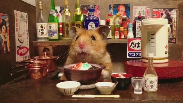 HamsterBartender9