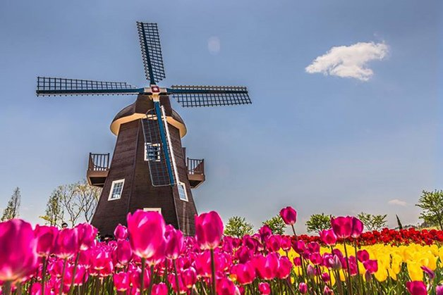 HolandaNuffic2