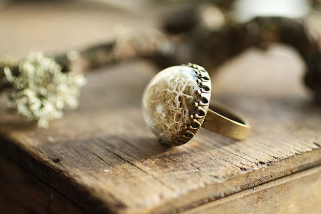 Poetic-Jewels-Containing-Real-Flowers-14