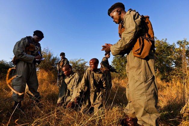 rinoceronte-africa8
