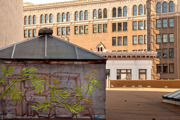 02-Mural-and-Photo-by-Mona-Caron_9315-22__880