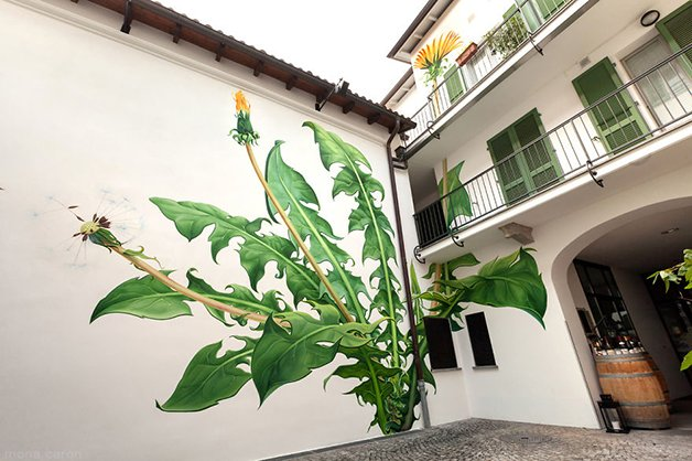 07-Mural-and-Photo-by-Mona-Caron_3198c2__880