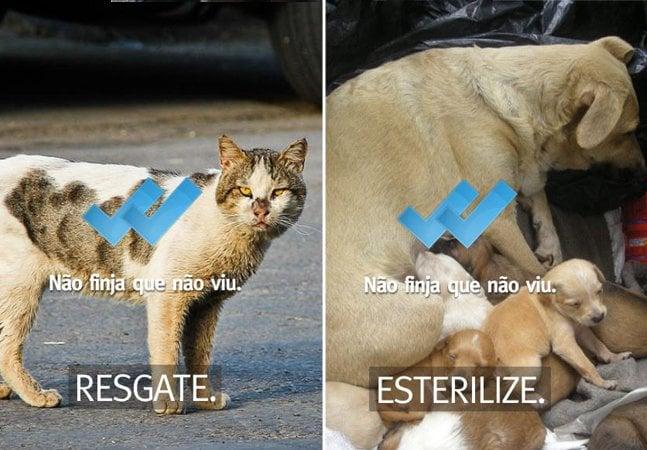 Campanha criativa usa dois tiques azuis do Whastapp para chamar atenção para os maus tratos aos animais