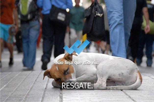 uniao-libertaria-animal10