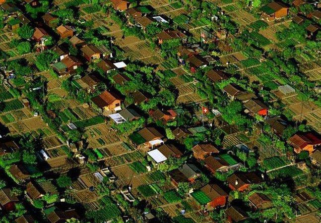 Horta comunitária: conheça o bairro suíço no qual cada morador planta  um alimento e compartilha com os demais