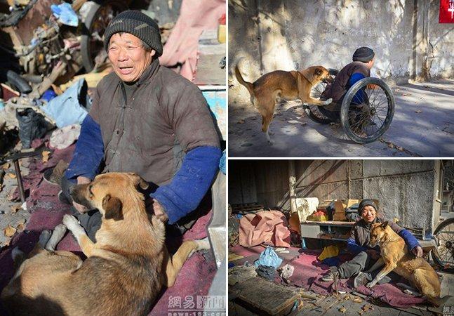 A emocionante história da cadela que empurra seu dono paraplégico para o trabalho todos os dias
