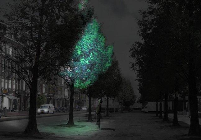 Árvores que brilham no escuro poderão substituir a iluminação pública no futuro