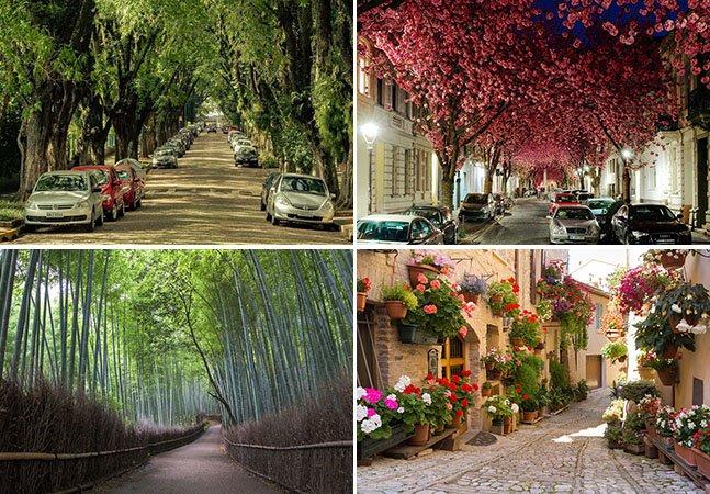 10 ruas verdes incríveis para se conhecer ao redor do mundo