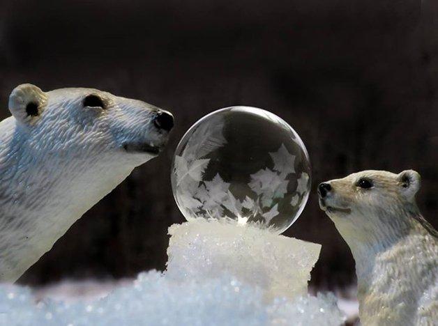 bolha-congelada18