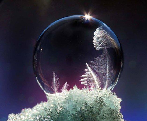 bolha-congelada19