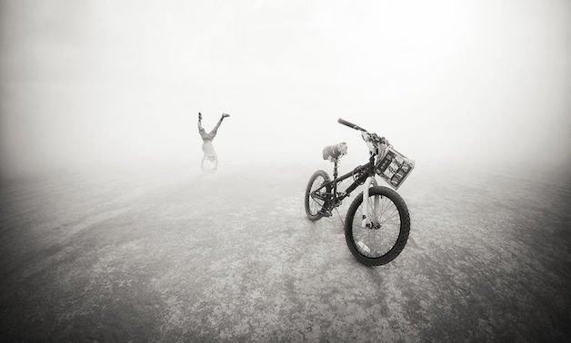 fest bike