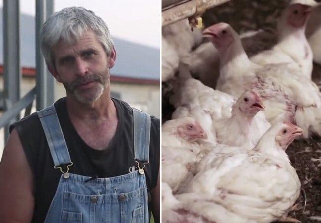 Vídeo impactante mostra de onde vem o frango que consumimos