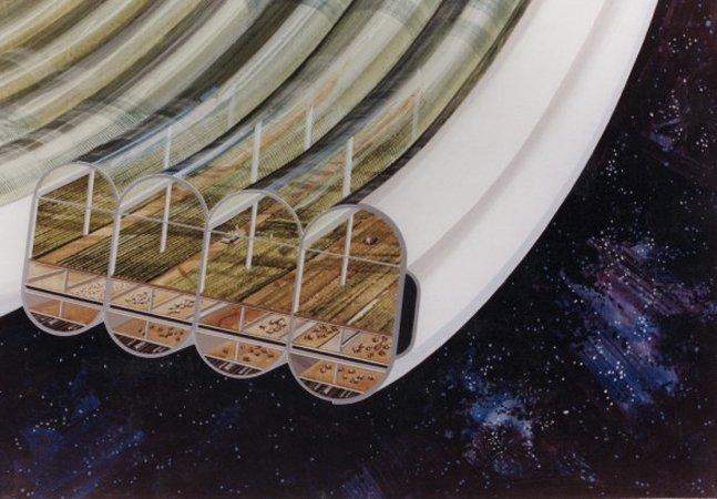 Cientistas noruegueses querem criar plantações no espaço