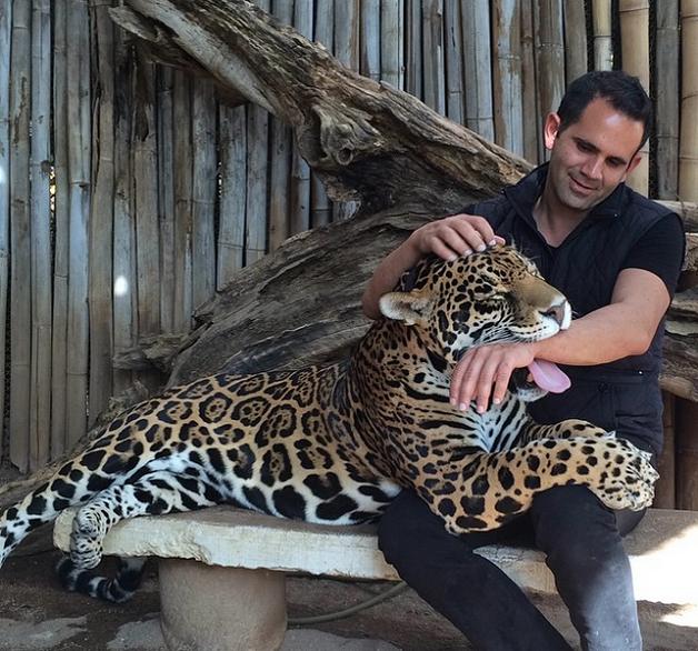 jaguar7