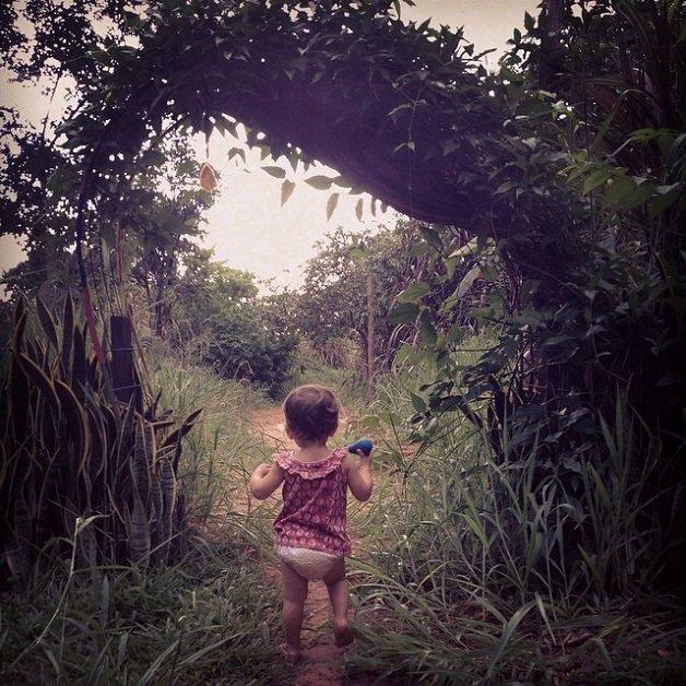 natureza3