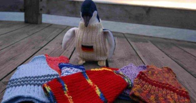 pinguin4