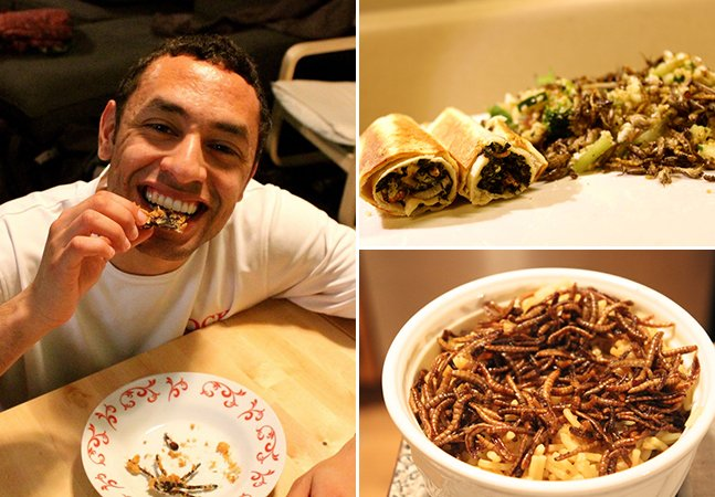 As conclusões do estudante que passou 30 dias se alimentando de insetos