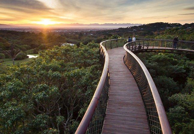 A ponte que te permite andar por cima das árvores de um jardim na África do Sul