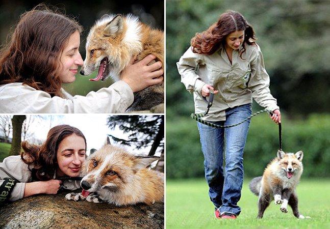 Raposa resgatada por humanos acha que é um cachorro