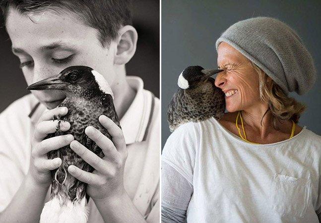 Pássaro Pega adotado por família na Austrália faz sucesso no Instagram