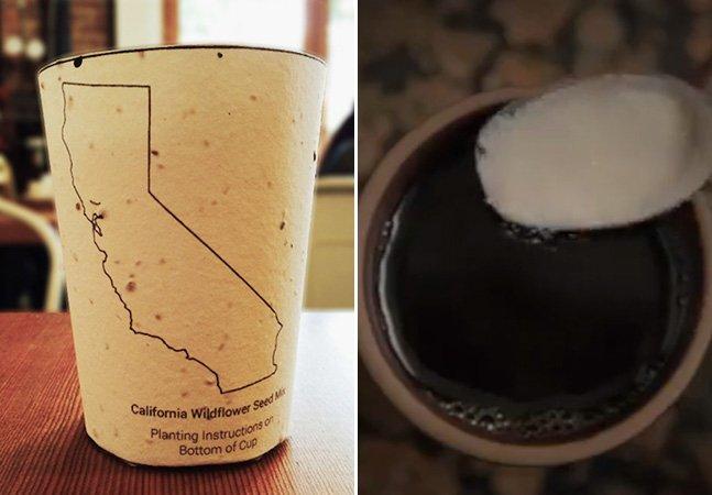 """Empresa cria o primeiro copo de café """"plantável"""" do mundo"""