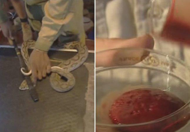 É isso que acontece quando o veneno de cobra entra em contato com seu sangue