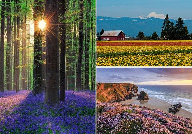 4 provas incríveis de como a primavera transforma os lugares