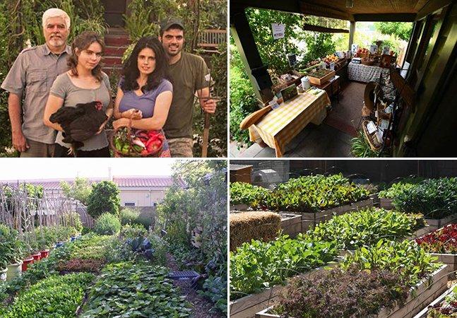 Família cria mini fazenda no meio da cidade que produz 3 toneladas de alimentos orgânicos por ano