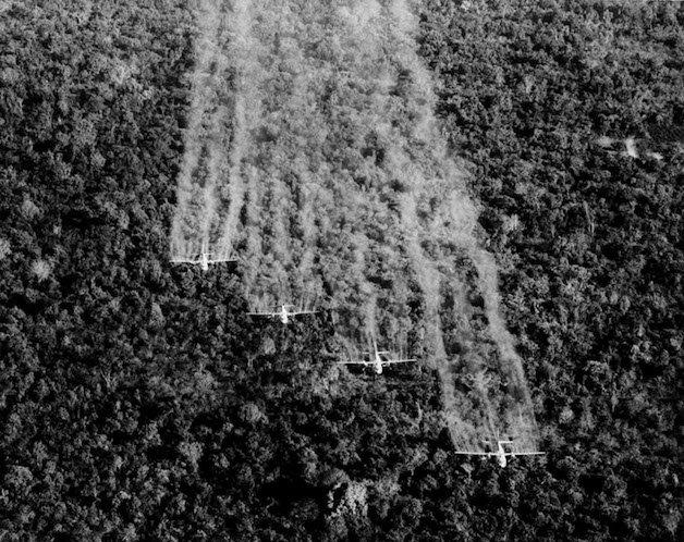 Vietnam War Defoliation