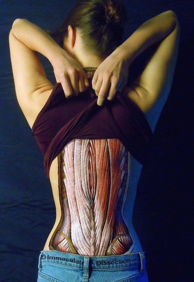 corpo 10