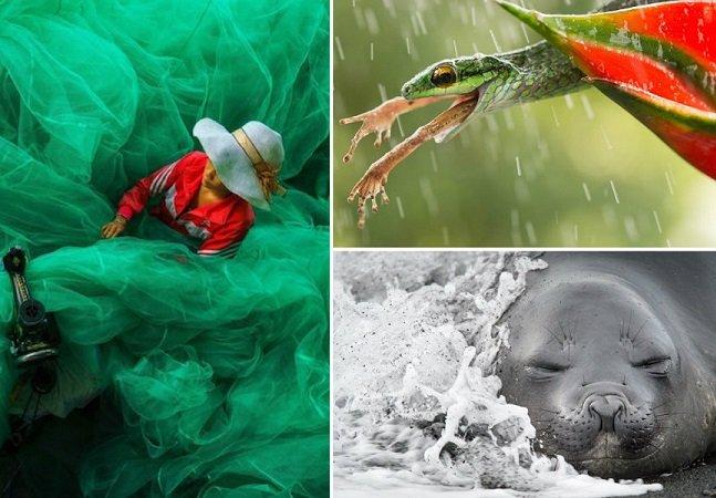 Conheça as fotografias finalistas do concurso que reuniu imagens de mais de 26 mil fotógrafos