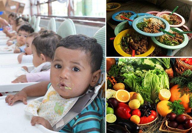 SP aprova projeto de lei para incluir alimentos orgânicos na merenda escolar