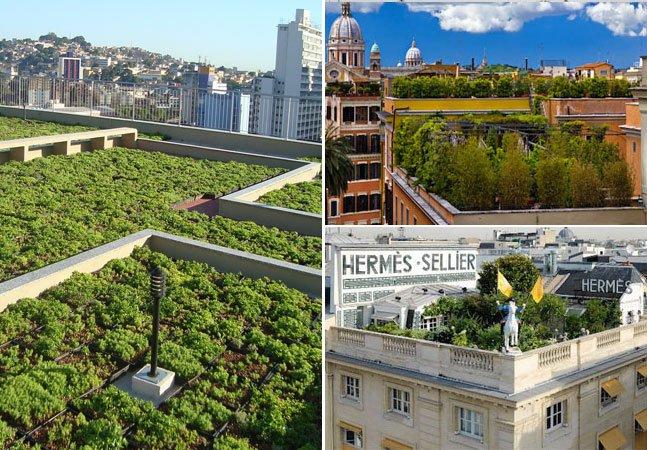 Nova lei na França obriga prédios comerciais a terem telhado verde ou placa solar