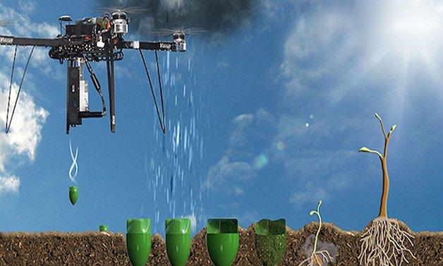 DronesForest1