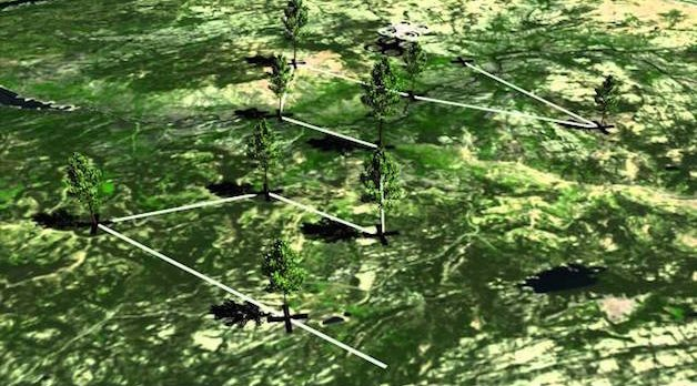 DronesForest4