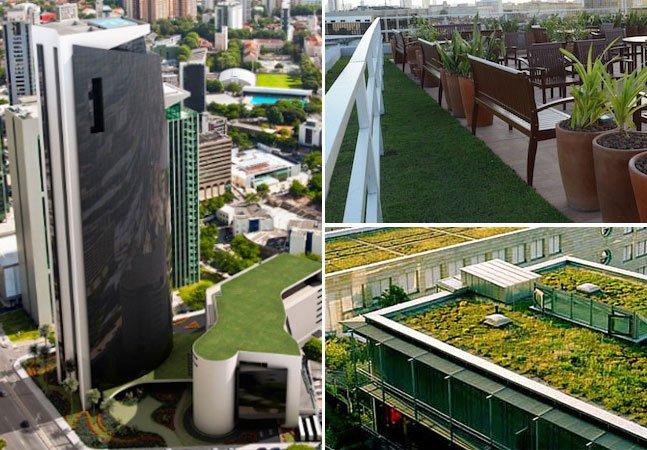 Recife aprova lei que obriga qualquer prédio com mais de 4 pavimentos a ter telhado verde
