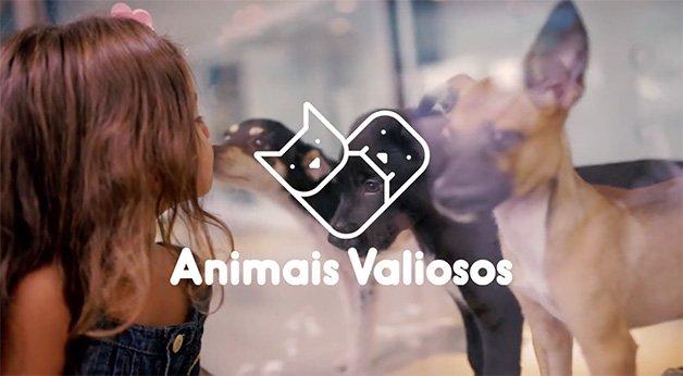 animais_valiosos2