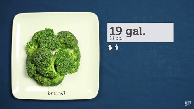 comida2