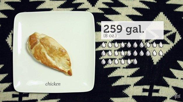 comida6