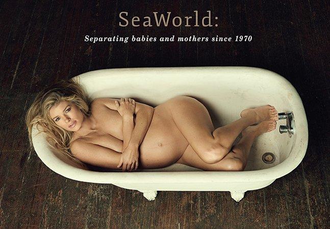 Modelo posa grávida e nua em banheira para protestar contra o tratamento dado a mães orcas no Sea World