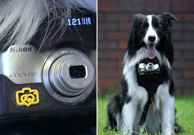 Câmera fotográfica para cães é ativada de acordo com as batidas do coração do animal