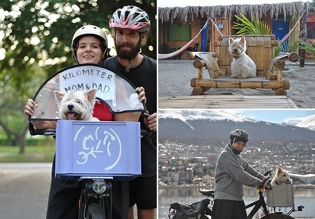 Casal atravessa continente americano de bike e com uma companhia especial: seu cãozinho cego
