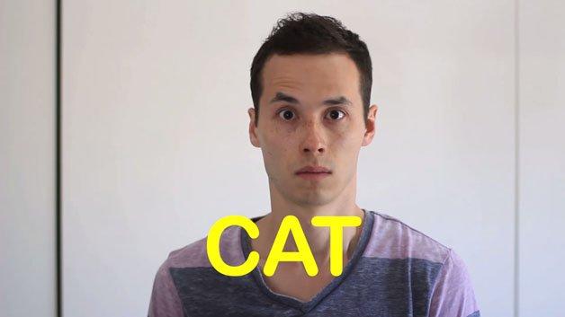 cao-gato-video12