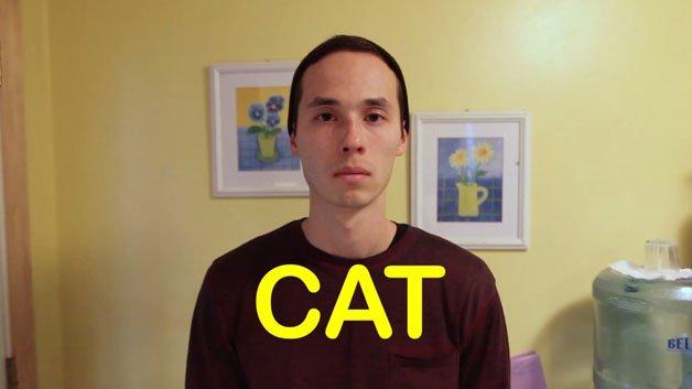 cao-gato-video3