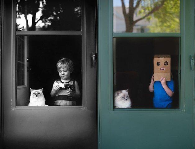 gatos-filhos2